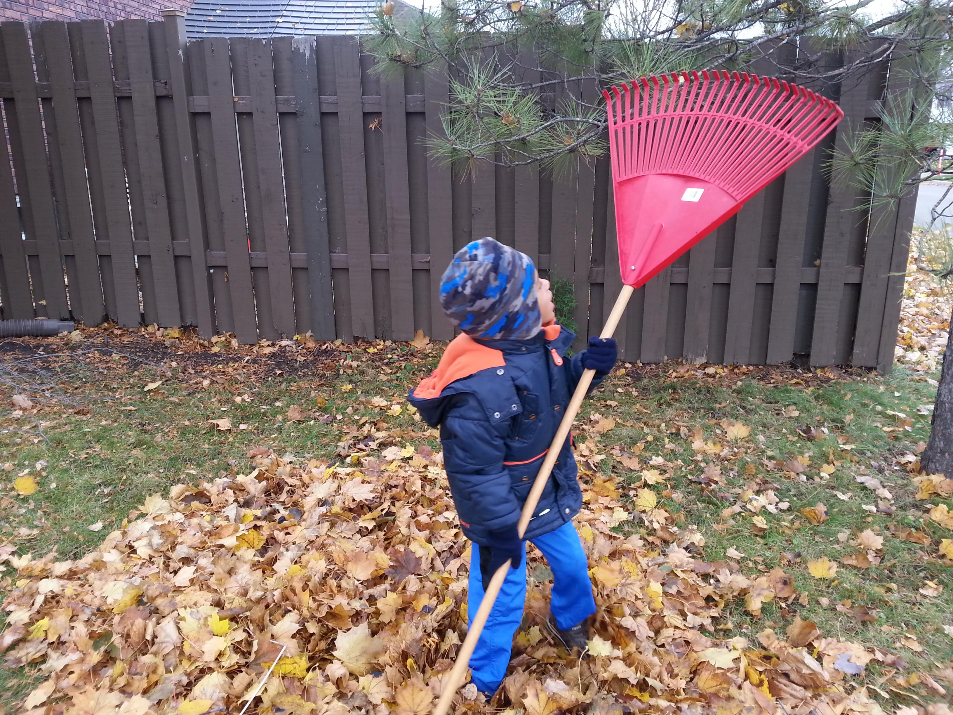 dr-sazini-Child-raking-leaves-in-the-Fall/Autumn